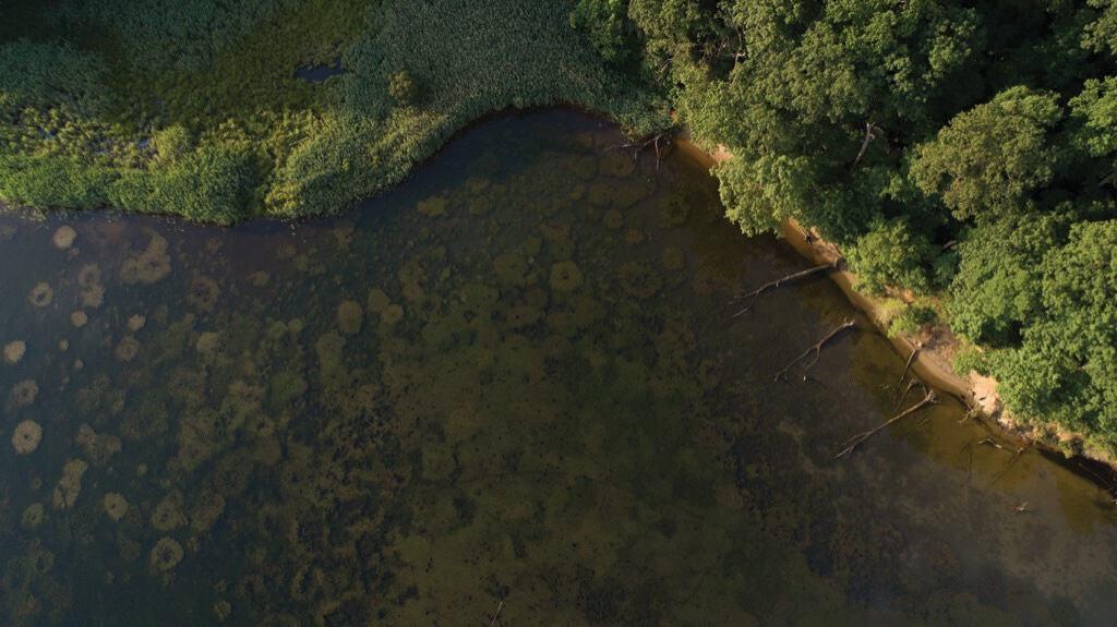 Severn-River-Chesapeake-Bay-Magazine-©-Jay-Fleming-01_web