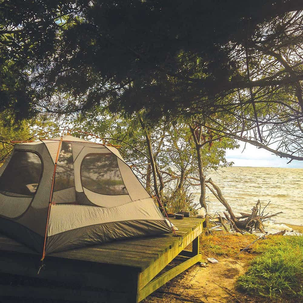 A cozy Long Point campsite overlooking Old House Cove. Photo by  Ashley Stimpson