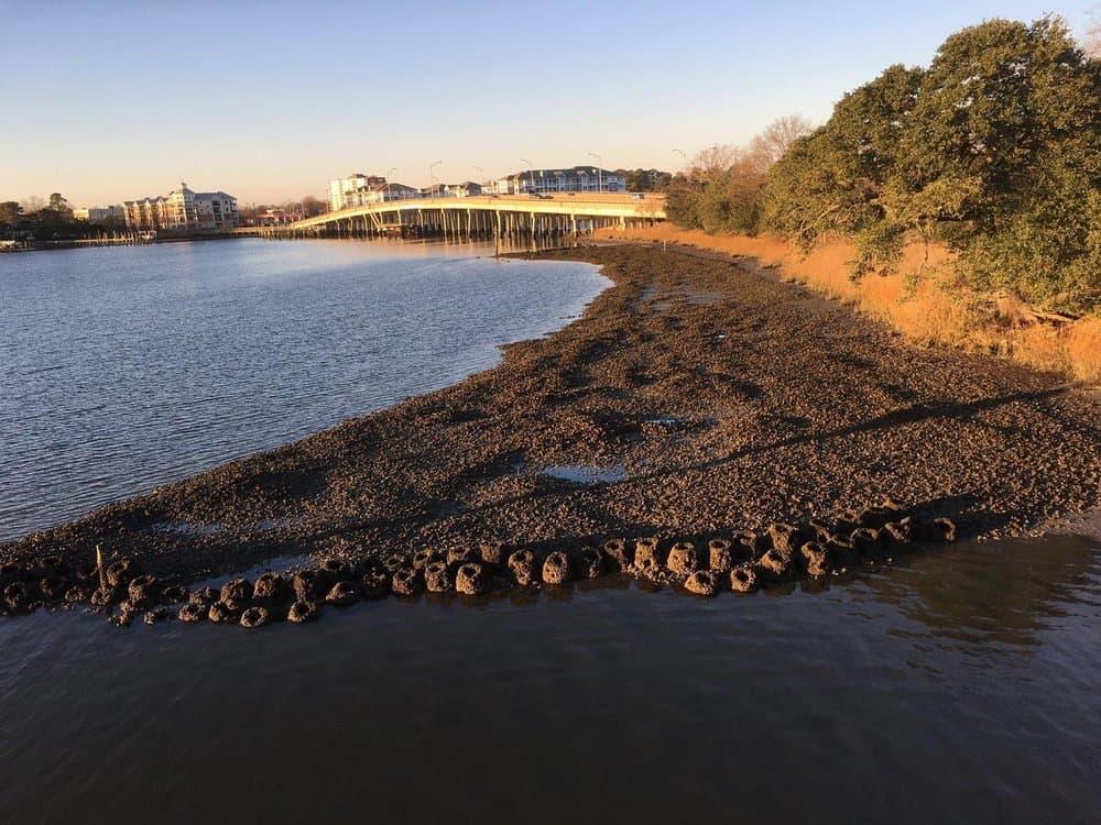 Elizabeth River Project/Joe Rieger
