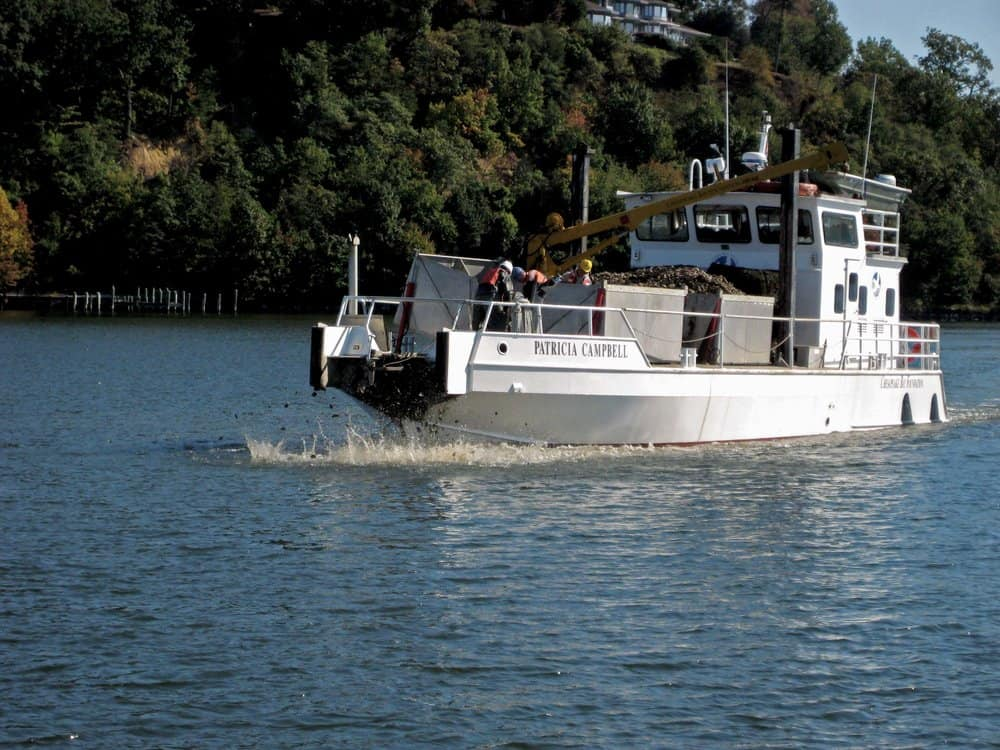 The  Patricia Campbell  spreading oysters. -  Photo by CBF Staff