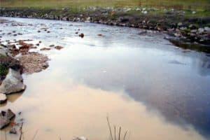 Anacostia Flunks River Report Card, Record Rain to Blame