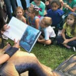 Chesapeake Mermaid Saves the Bay in New Kids' Book