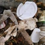 Md. Senate Passes Styrofoam Ban, Would be Nation's First Statewide Ban