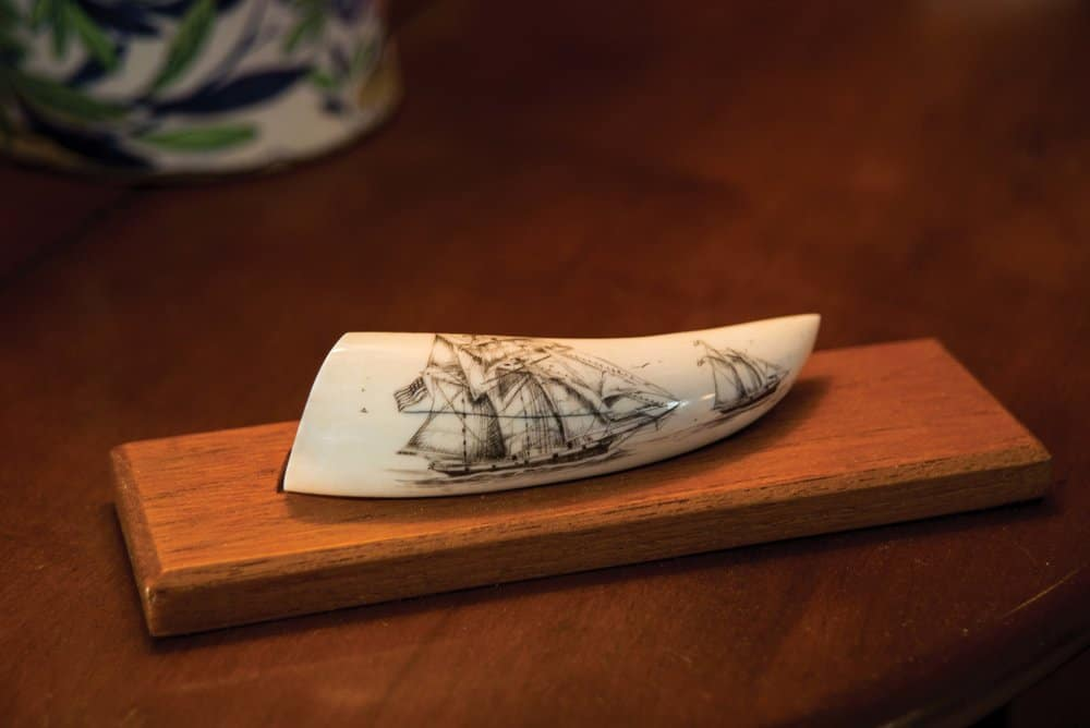 A two-dollar tooth, carved to Hecklinger's specifications. Photo by Joe Evans,