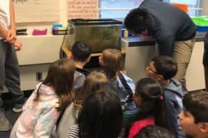 Student Dreams Up Award-Winning Ecosystem Classroom Program