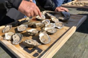 SLIDESHOW: Urbanna Oyster Festival 62 Years Strong
