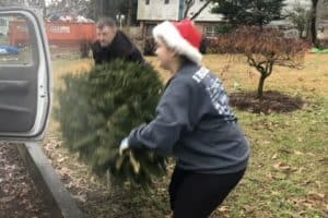 VIDEO: Christmas Trees Repurposed to Stop Erosion