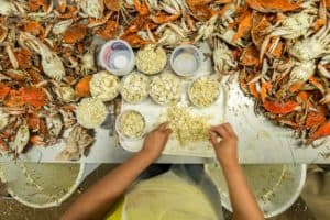 Feds Release More Crab Worker Visas