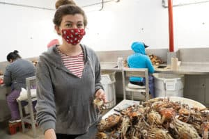 Virus & Visa Shortage a One-Two Punch for Crab Season