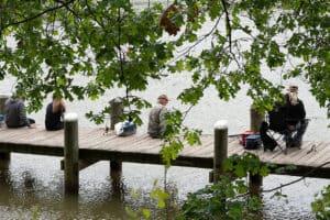 Study: Mercury Widespread in Chesapeake Headwaters Fish