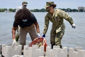 Lafayette River Gets Oyster Castles Fit for Bivalve Royalty