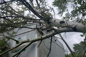 Isaias Damages Environmental Center on Tilghman Island
