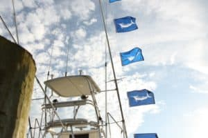 White Marlin Open Underway with Changes due to COVID-19 and Isaias