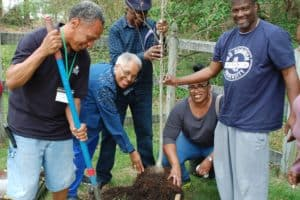 Richmond Tree Initiative to Combat Heat, Pollution, Inequity