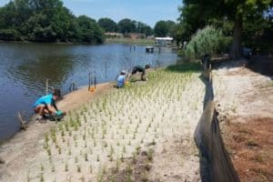 James River Gets  Million for Living Shorelines