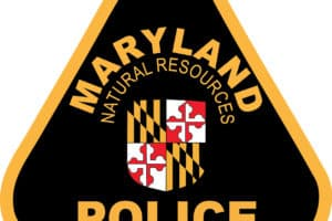 Md. Woman, 23, Dies after Bow Rider Strikes Shoal
