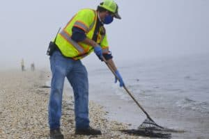 Del. Oil Spill Aftermath Reaches Md. Beaches