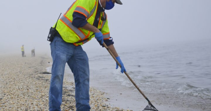 Tons of Debris, Oil-slicked Birds Removed from Del. Oil Spill