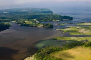 New Law Creates Chesapeake WILD Program for Wildlife Funding