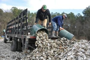 Urgent Call for Used Oyster Shell Donations
