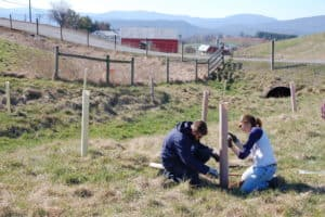 Va. Invests in Farm Conservation, Building Progress in Stream Protection
