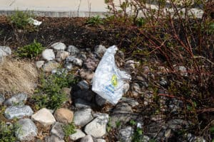 Md. Statewide Plastic Bag Ban Looks for Support on Bay
