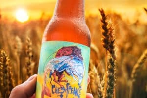 10 Oysters per Beer: New Chesapeake Wheat Ale Raises Restoration Funds
