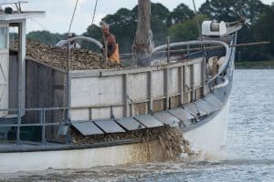 Tred Avon Oyster Sanctuary Work to Resume after Years of Delays