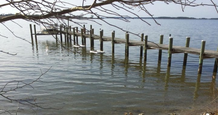 "Navy Finds ""Forever Chemicals"" on Patuxent, St. Marys Rivers"