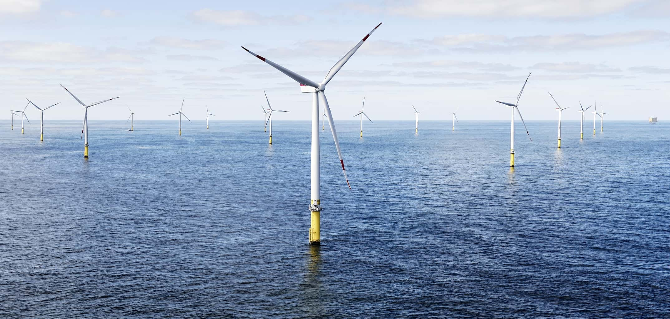 NOAA to Share Offshore Wind Data from Mid-Atlantic Waters