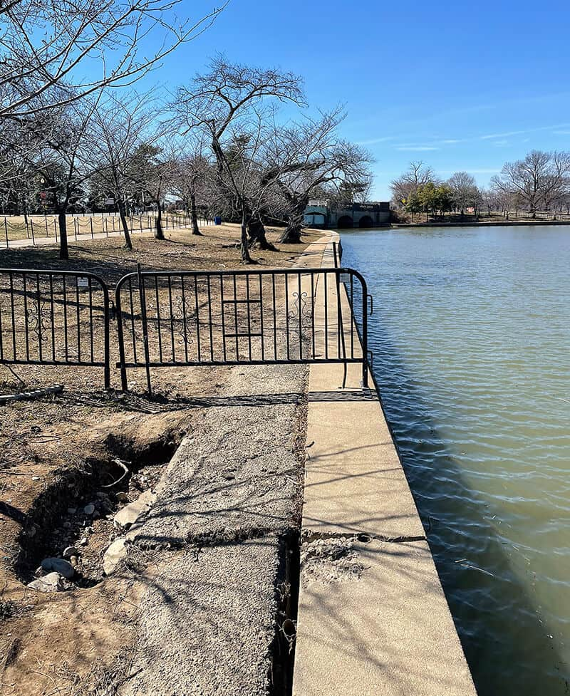 Cherry Blossoms Threatened: Rising waters trigger change for D.C.'s Tidal Basin