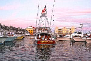 White Marlin Open Announces New Festival for Spectators