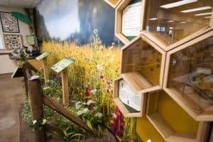 Kiptopeke State Park Debuts New Visitor Center
