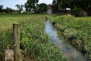 PA Farmers Named Finalists for Conservation Award