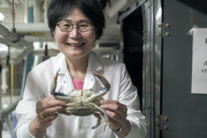 Md. Scientists Crack Blue Crab's Genetic Code
